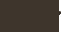 Portfolio de ilustração de Zansky Logo
